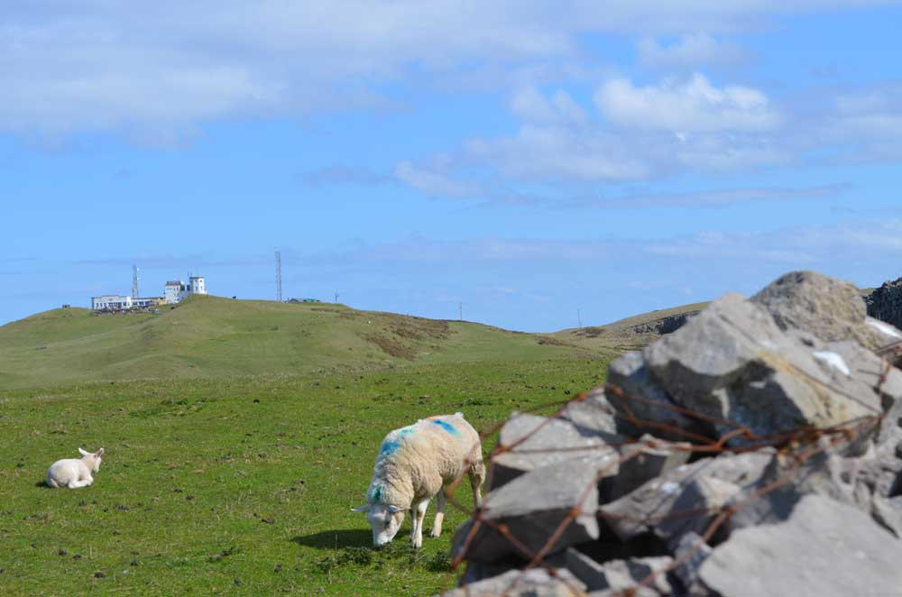 The Great Orme