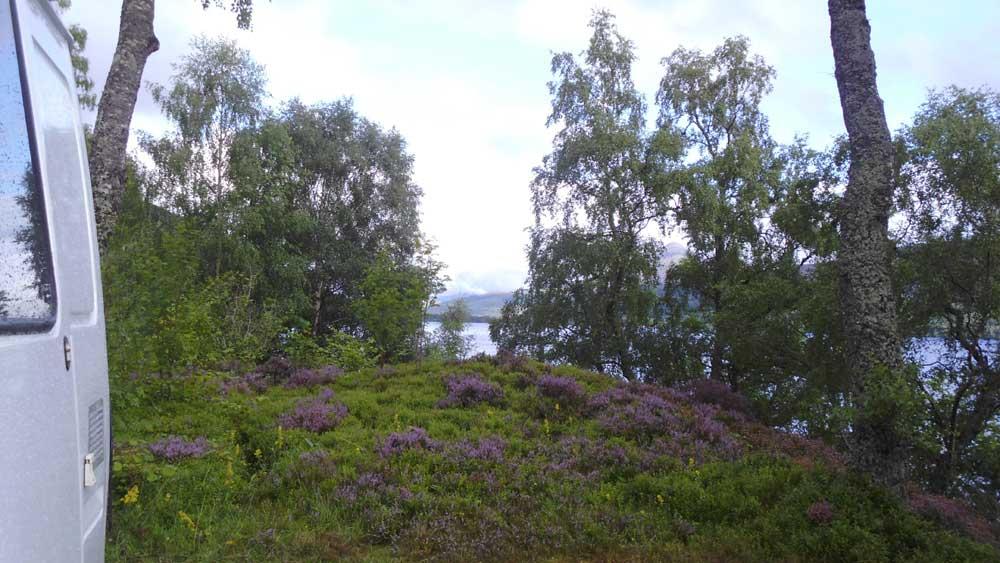 van-and-plants-around-loch-