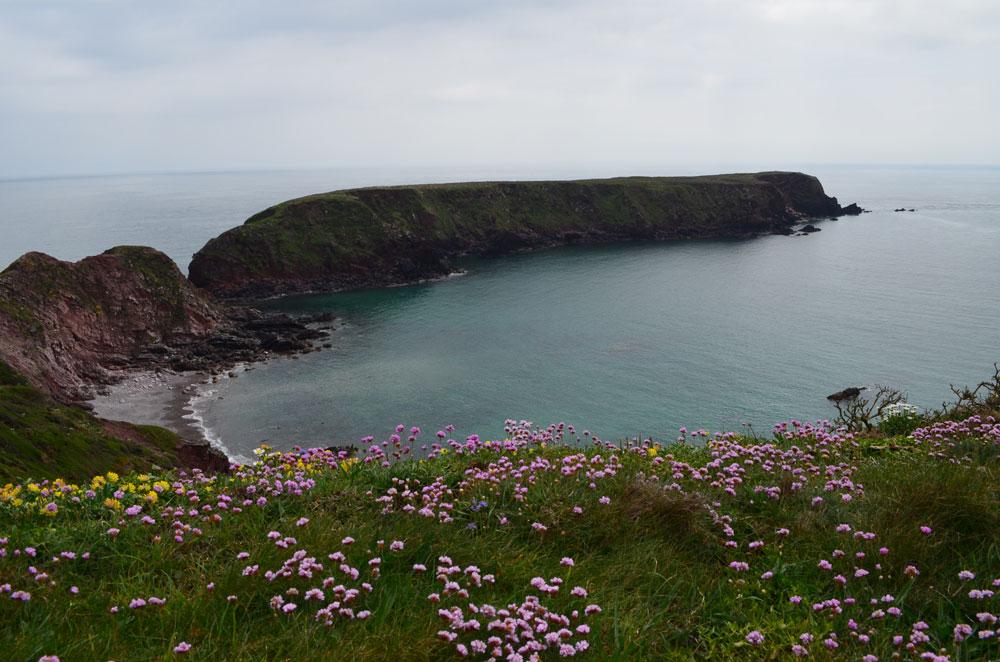 Pembroke coast 14