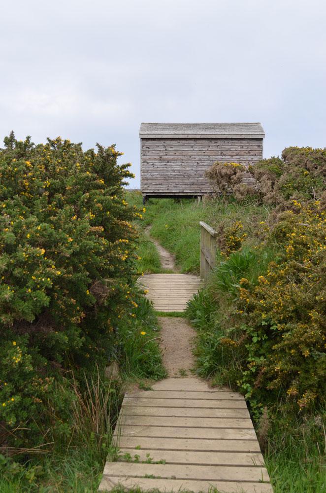 Pembroke coast 19