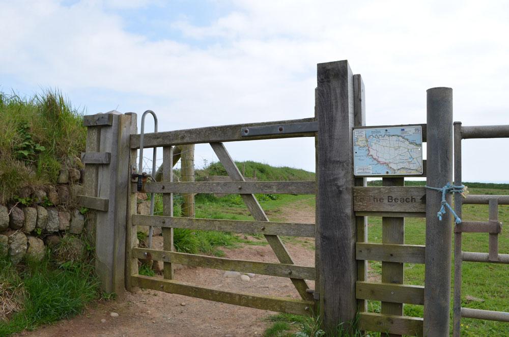 Pembroke coast 21
